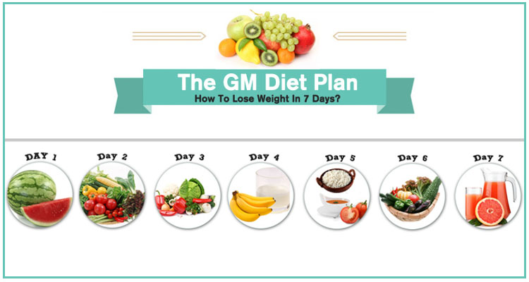 Gm Diet Plan General Motors 7 Day Diet Chart Menu Review